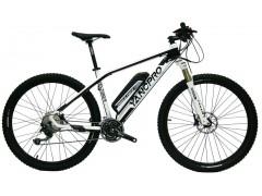 电动辅助自行车